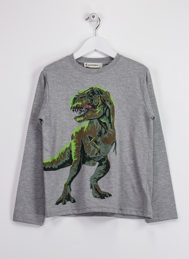 Morhipo Kids Baskılı Sweatshirt Gri